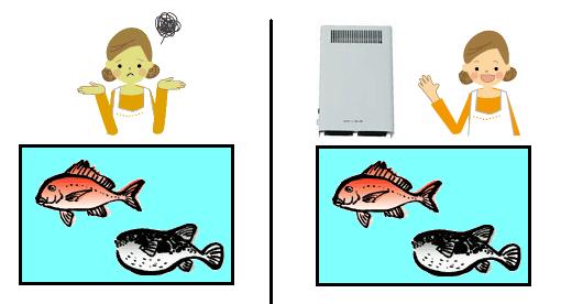 オゾン型殺菌消臭器による生け簀の魚の臭いの脱臭